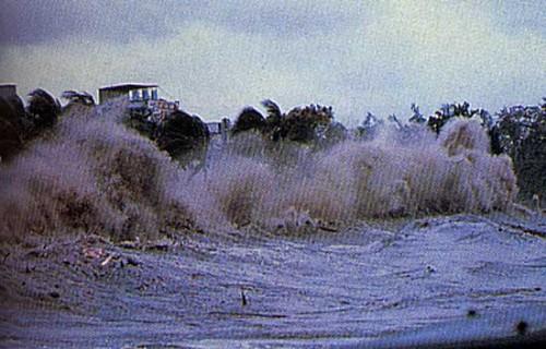 tsunami[1].jpg