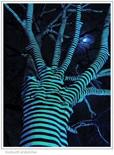 arbre-tribal.jpg