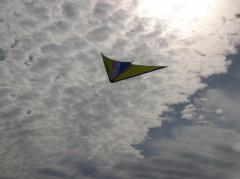cerf-volant-biarritz-france-1034452341-1100505.jpg