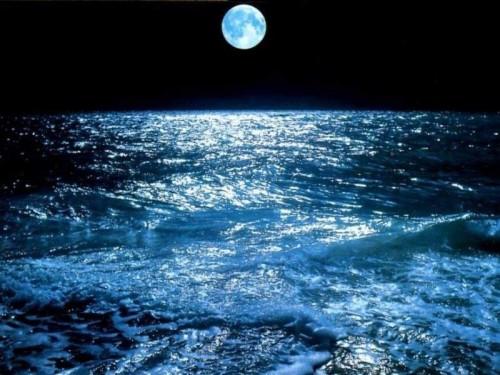 mer_bleue.jpg