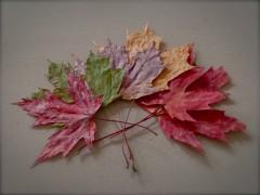 feuilles2.jpg
