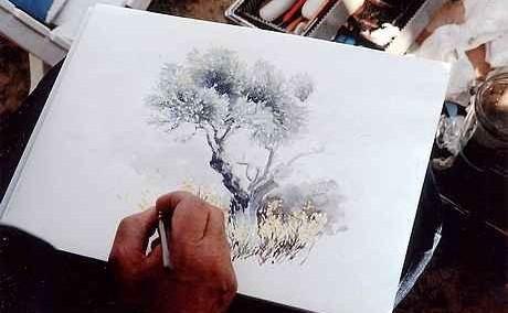 stage-aquarelle-provence-olivier.jpg
