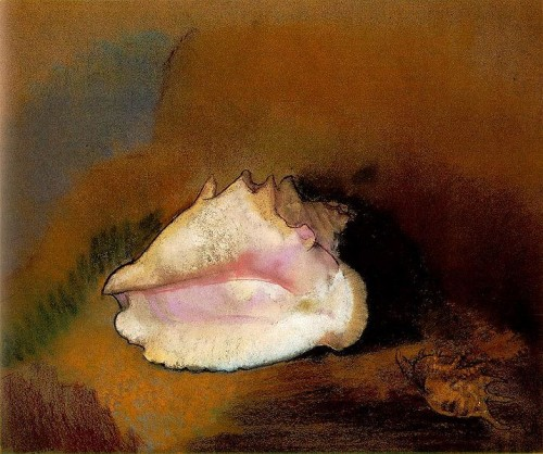 717px-Redon.coquille.jpg